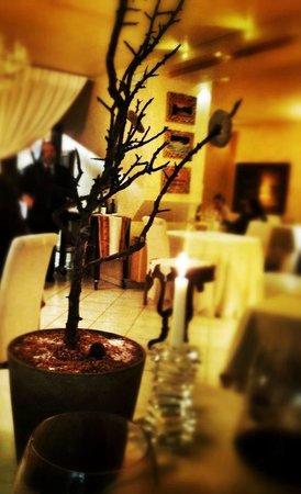 Il Tiglio: albero delle coccole