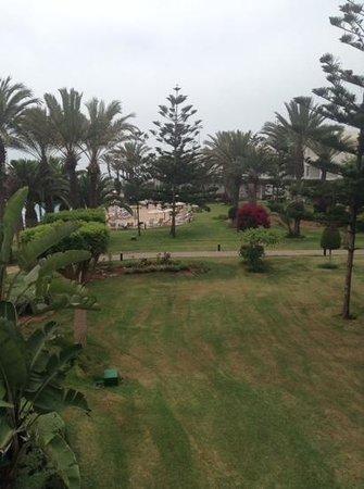 Iberostar Founty Beach : nice gardens