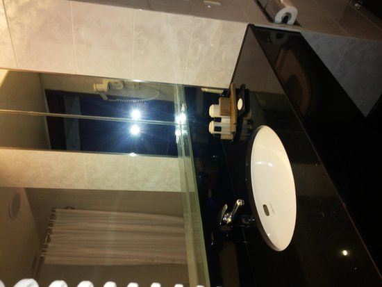 Regal Airport Hotel: bathroom