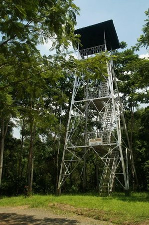 La Mesa Eco Park: One of the towers with view over the reserve