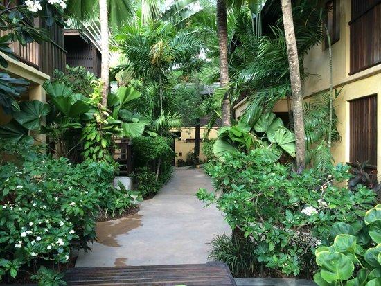 Buri Rasa Village Samui : Hotel Grounds