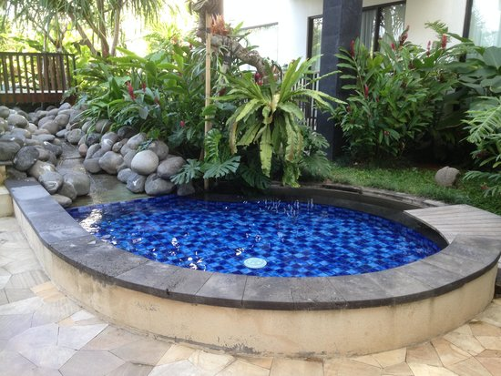 Taksu Sanur Hotel: The kiddie pool