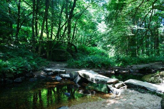Foret de Huelgoat : Forêt de Huelgoat