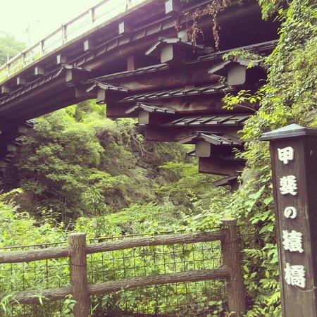 Saru Bridge : 甲斐の猿橋