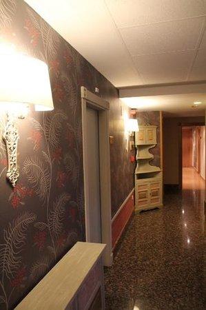 Hotel Bujaruelo: pasillo