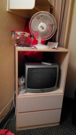 Budget Inn Patricia Hotel: Fan & CRT TV