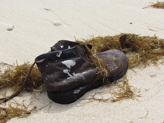 Matamanoa Island Resort : scarpa