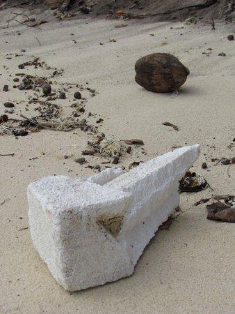 Matamanoa Island Resort : plastica