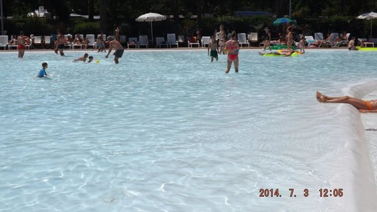 Park Albatros: piscina