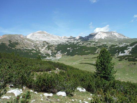 Сан-Виджилио, Италия: ALPE DI SENNES