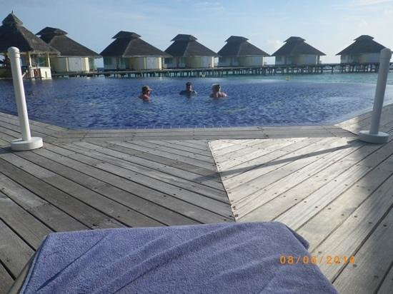 Ellaidhoo Maldives by Cinnamon : pool