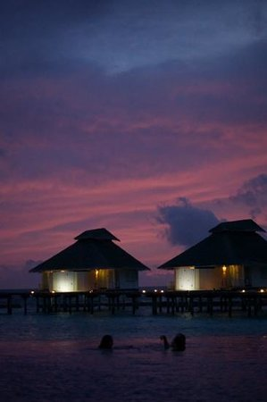 Ellaidhoo Maldives by Cinnamon : sunset