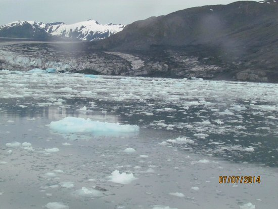 Lu Lu Belle Tours: Icy water on the way to Columbia Glacier