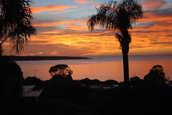 """Twofold Bay Motor Inn: """"Sunrise"""""""