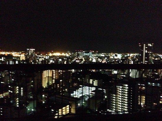 Tokyo Marriott Hotel: View from 21st floor