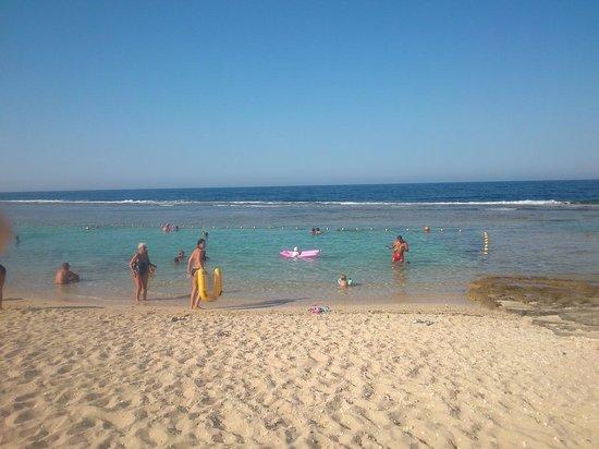 Akassia Swiss Resort El Quseir: la baignoire à la plage, de jolis poissons