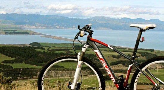 Wharekauhau Country Estate: Bike