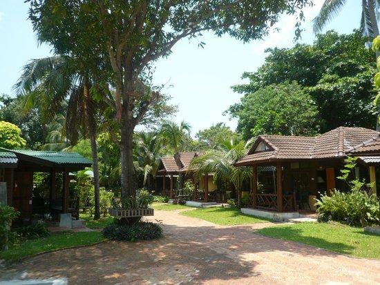 World Resort Bungalow : Домики находятся в саду