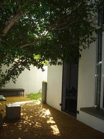 Palm Nest: Beautiful backyard