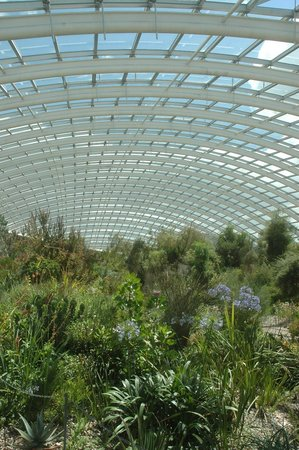 National Botanic Garden Of Wales: Largest Single Span Roof In The World