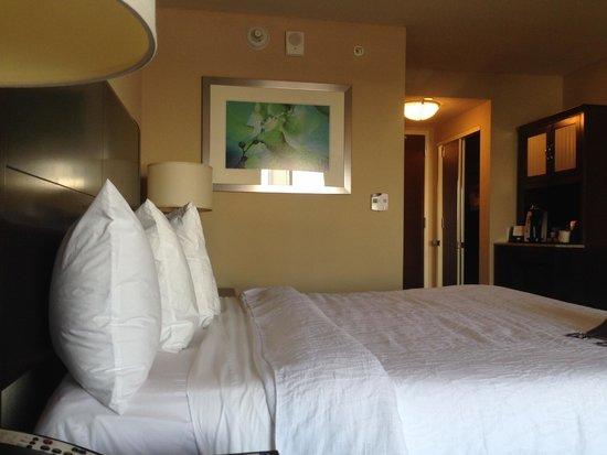 Hilton Garden Inn Atlanta Downtown: King Room