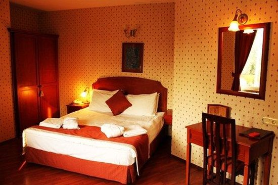 Erguvan Hotel: Guest Room