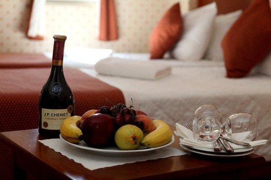 Erguvan Hotel : GUESTROOM
