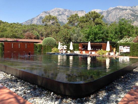 "Club Med Palmiye : swimming pool ""Zen"""