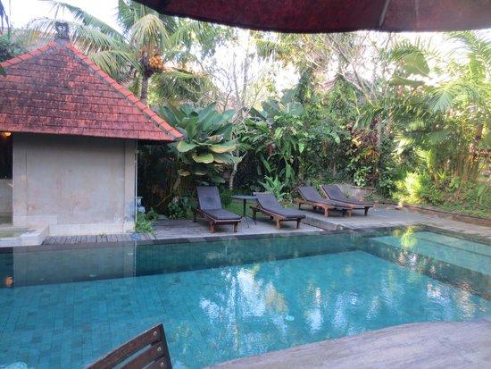 Matahari Cottage Bed and Breakfast: Pool