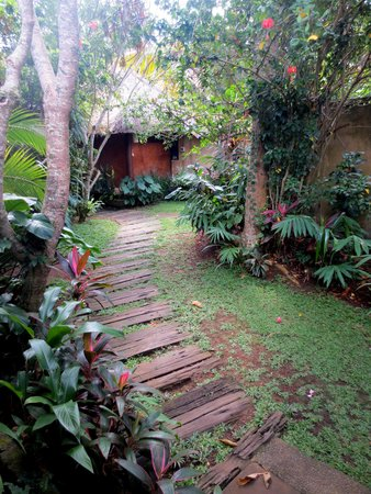 Matahari Cottage Bed and Breakfast: outdoors of room