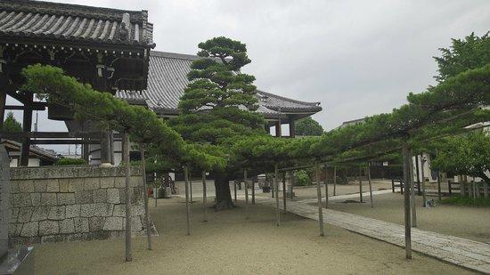 Honpukuji Temple