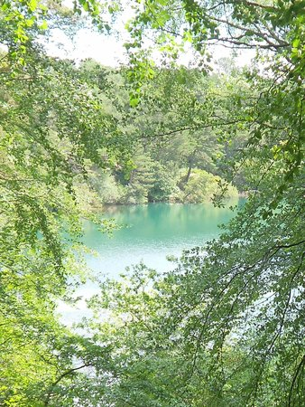 The Blue Pool and Tea House: A glimpse through the trees