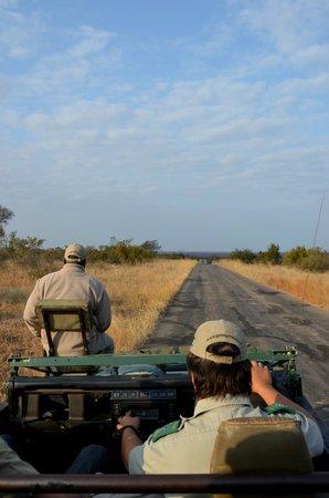 Gomo Gomo Game Lodge: En routeb pour le safari