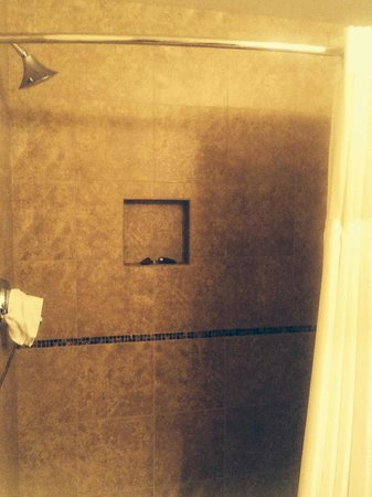Monticello Hotel: Shower at small motel beside main hotel