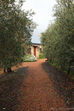 La Petite Dauphine : Pathway to Suite