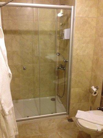 Julian Forest Suites : shower