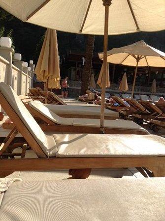 Julian Forest Suites : sun beds