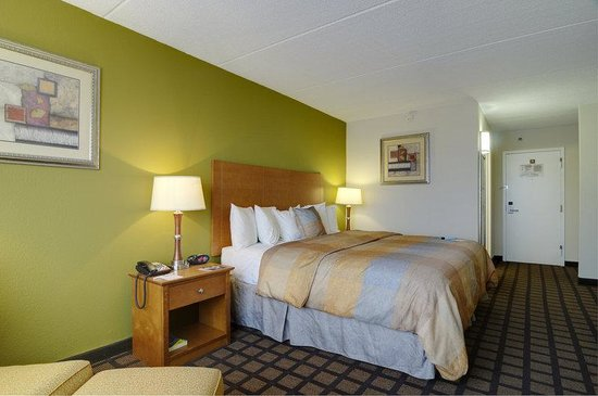 Best Western Plus Chicago Hillside : Single Guest Room