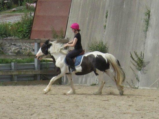 Drumcliffe Equestrian: Aero and I