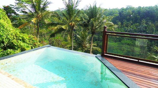 Kupu Kupu Barong Villas and Tree Spa: Villa 10's infinity balcony pool and breathtaking views