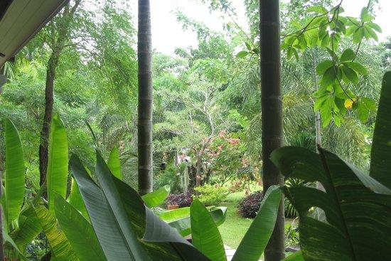 Grand Manita Beach Resort : astonishing gardens