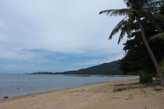 Grand Manita Beach Resort : beach