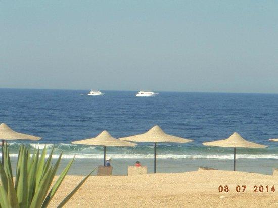 Coral Hills Resort Marsa Alam : прекрасное Красное море