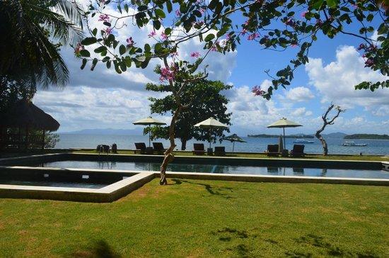 Cocotinos Sekotong, Boutique Beach Resort & Spa : Pool