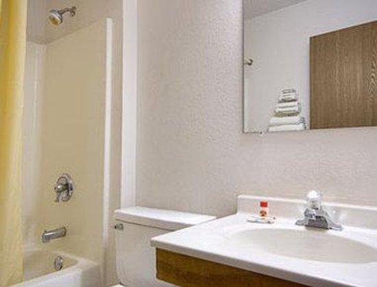 Super 8 Ionia MI: Bathroom