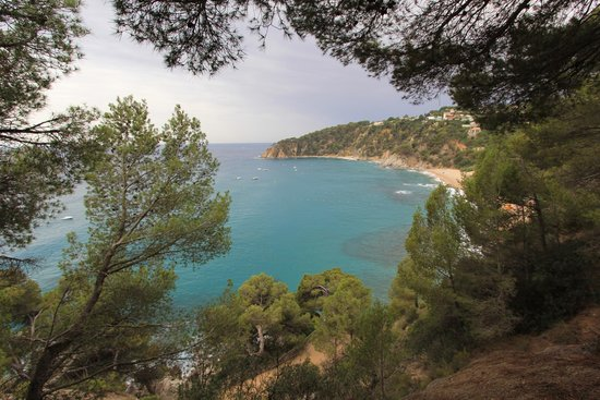 Camping Cala Llevado : View from campsite