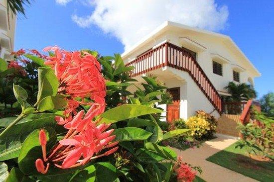 Carimar Beach Club : Tropical gardens