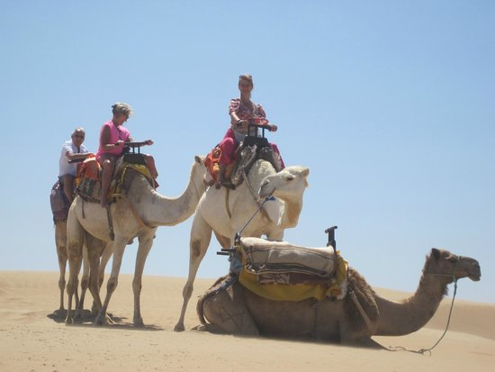 Ranch de Diabat : highlight of holiday