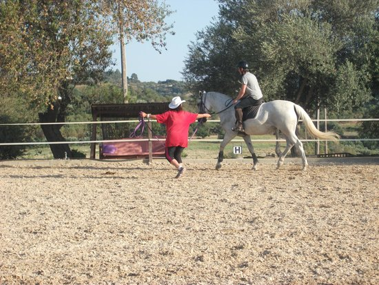 Amargeti Equestrian Club : My partner being assessed by Marlene