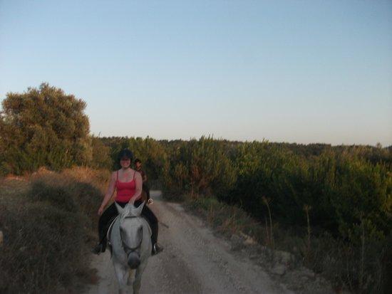 Amargeti Equestrian Club : Lovely views